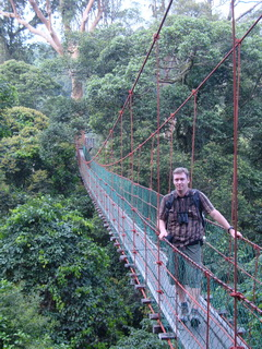 Canopy walkway in Danum Valley